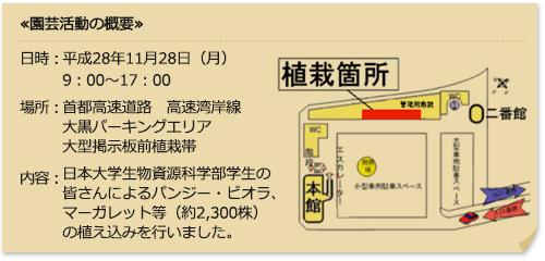 掲示板 日本 大学